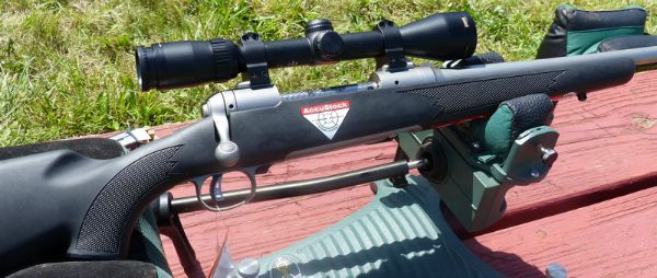 coyote cartridges and rifles most accurate factory varmint rifle