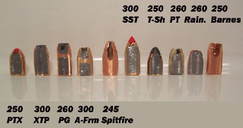 sectioned bullets