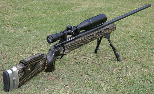 Custom built 7.62 Johson rifle.