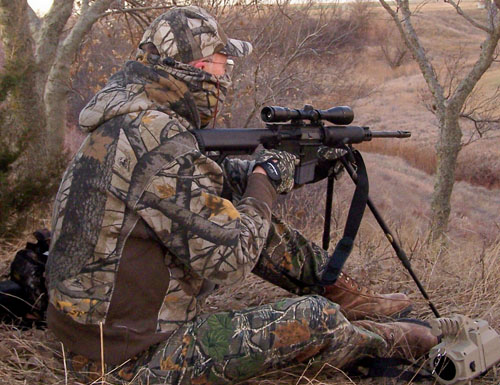Compared: Rock River Arms Coyote Carbine Versus the Ruger
