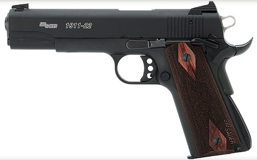 GSG 1911 Review - An Affordable Dedicated .22 1911 - Texas Gun Talk